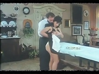 Brunette Maid  Uniform Vintage
