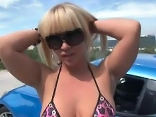 Blonde Car Glasses