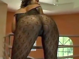 Ass  Pantyhose Pornstar
