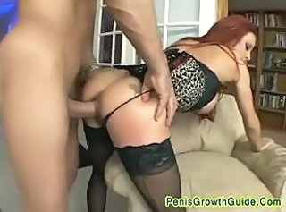 Anal Ass  Doggystyle Hardcore  Pornstar Redhead Stockings
