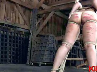 Spanked brunette hogtied