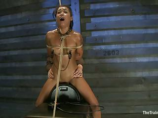 Sexy Skin Diamond Gets Suspended...