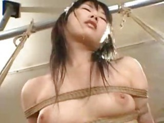 Suspended asian maids gets pussies vibrated