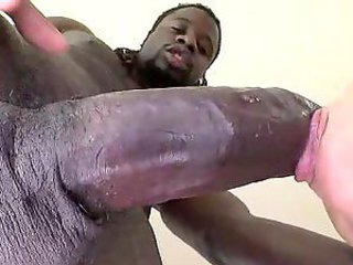 Curvy chick and black meat