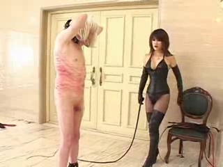 whipped into submissive