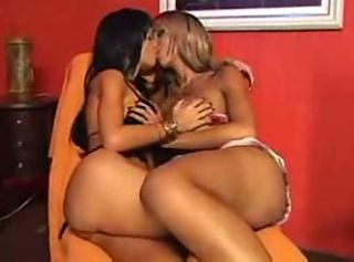 Carla and Leona shemaleshemale tranny ts