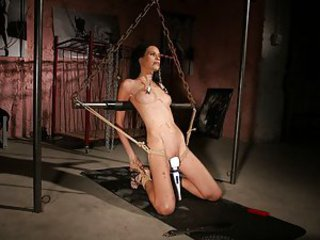 Amanda Baby is walking down the street when she notices a poster whith the following text: BDSM studio looking for pretty girls. The unusual photos make her curios and she calls the phone number on the poster. She's called in for an interview with the b