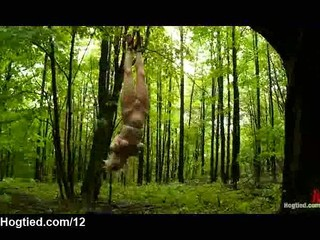 Bound Naked Babes Flogged In The Forest At Daytime