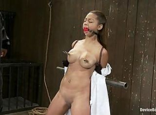 Nipple torture, brutal flogging of the tits and pussy