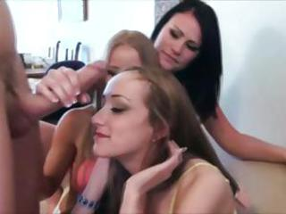 Cfnm manipulate femdom amateurs girls suck in excess of the hard cock of their unlucky sucker
