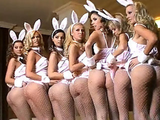 Super sexy bunnies behind the scene