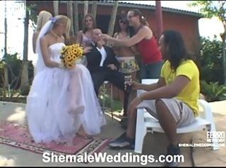 Alessandra shEmale bride onto movie activity