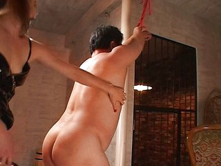Asian cock racking away from strict mistress