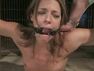 Sweet babe destined back a cage fucked