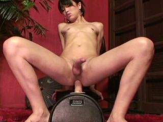 Horny brunette shemale in hot machine ass fucking action