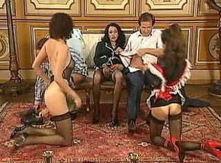 Groupsex Maid  Stockings