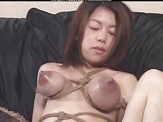 Bond Tits Lactation And Breastfeading By Spyro1958 Bdsm Bondage Slave...