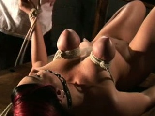 Totally free integument smut bdsm