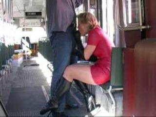 Amateur Blowjob Bus Clothed  Public