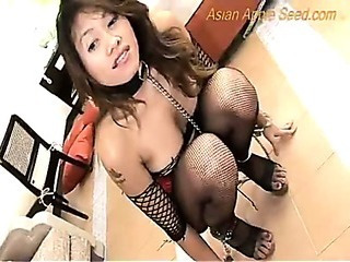Asian Fishnet