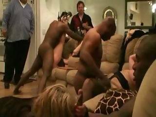 Amateur Groupsex Hardcore Interracial Mature Orgy Swingers
