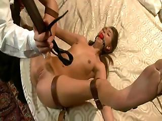 Bound Up And Blindfolded Riley Reid Has Got Laid Rough