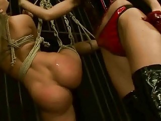 Young mighty mistress punishng sex slave