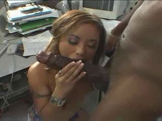 Babe  Blowjob Interracial Office