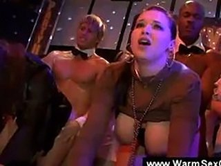 Party girls want to get fucked