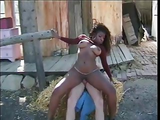 Ebony Farm Interracial  Outdoor Riding Vintage