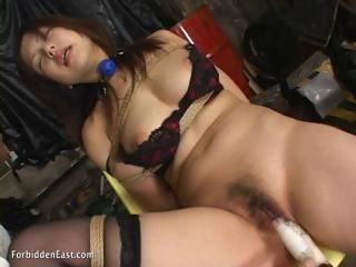 Asian Bondage Fetish Hairy