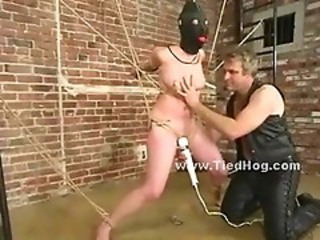 Blonde Hanged Upside Down From C...