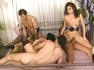 Big Tits Groupsex Hardcore  Orgy Stockings Swingers