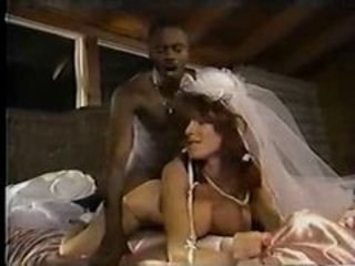 Bride Doggystyle Hardcore Interracial  Vintage
