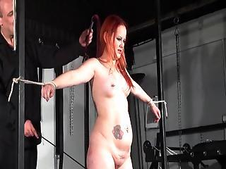Ginger Learner Slaves Whipping And Bound Dungeon Breast  Of English Babe Submissive Petite Inside Strict Torments
