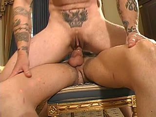 Shemale with shaved pussy rides on a lasting cock