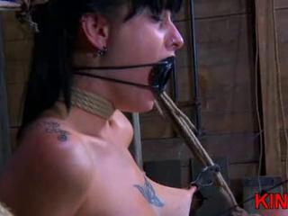 Tattooed dominated brunette roped Sex Tubes