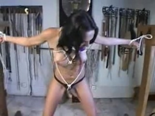 transsexual bondage