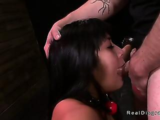 Dark Haired Asian Babe Chained Increased by Fucked
