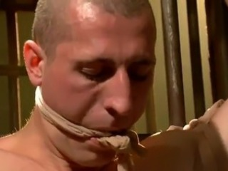 Loony female domination And roped For Bald person Courtesy Of Ashley Fires