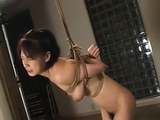Bound Japanese Girl Being Abused Increased by Crying