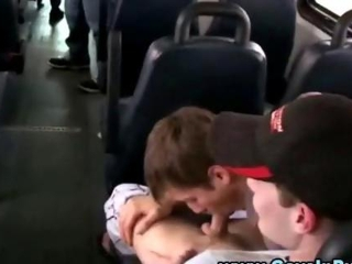 Gay school bus action with blowjobs
