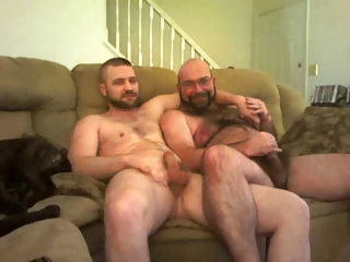 Two bears wanking on sofa