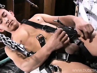 First we have the cutie who's in a leather harness that's