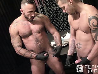 bdsm, bears, homosexual, huge dick, hunks