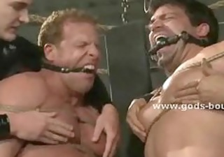 meaty gays fastened in rope and leather and punished by pervert mast