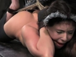 Kitty play session with hogtied action