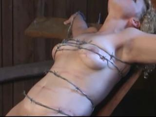 tied with barbed wire, deposing hairy teat and pussy meat
